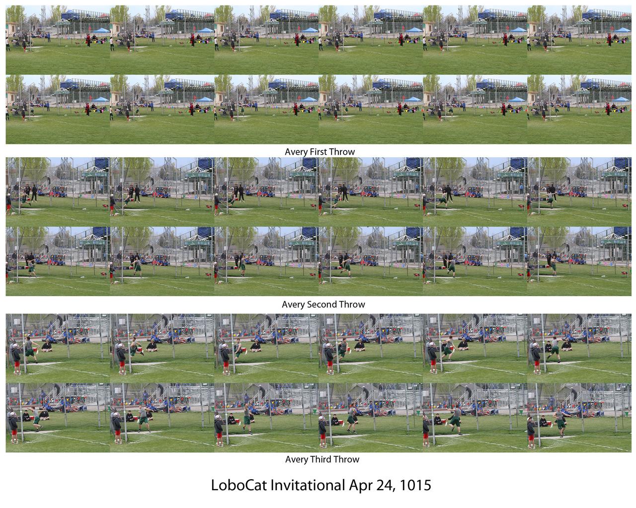0. Avery LoboCat 4-24-15.jpg