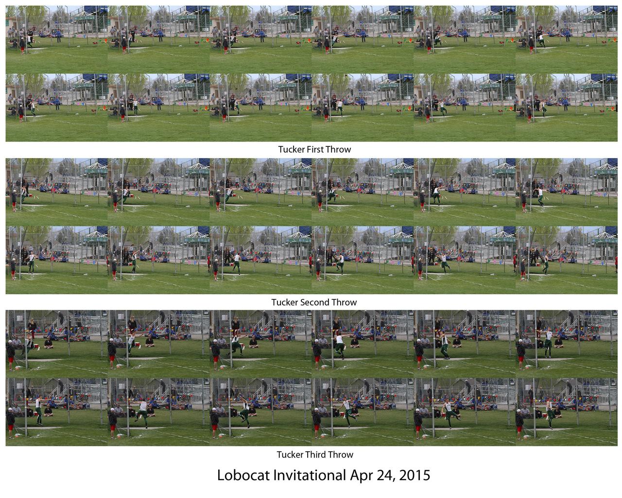 0. Tucker LoboCat 4-24-15.jpg