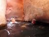 28-swim-channel-here-comes-dave